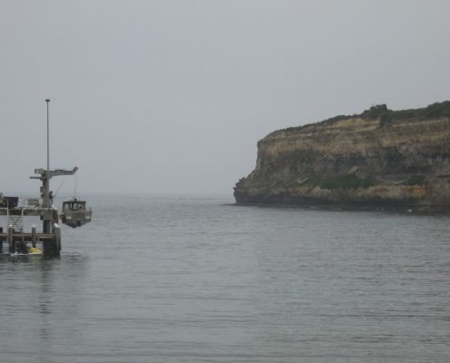 misty-morning-port-campbell