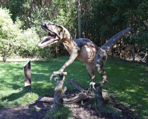 fun-dinosaur